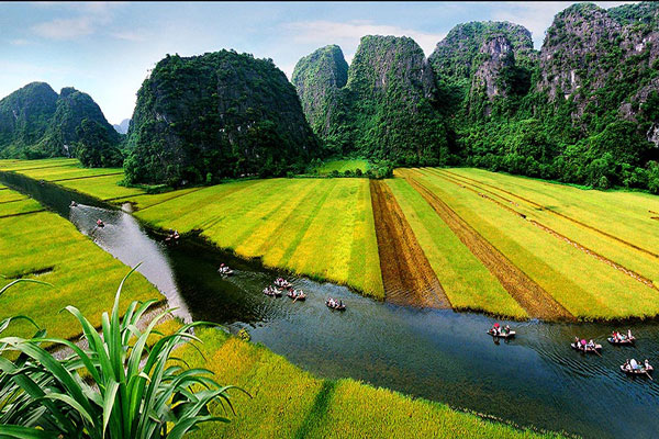 6day/5night Hanoi-Halong-Ninh Binh-Perfume Pagoda (Daily Touch)